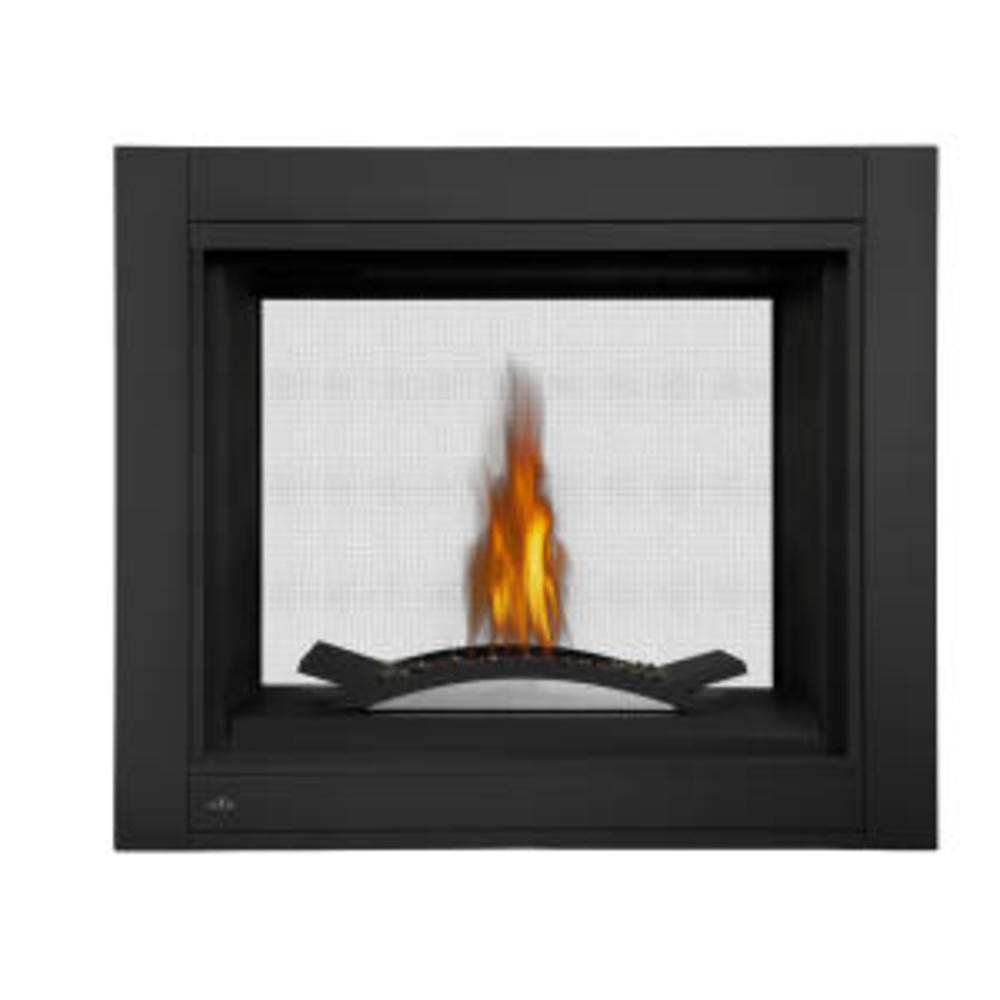 Napoleon Ascent Multi-View See-Thru  Fire Cradle Gas Fireplace-BHD4STFCN
