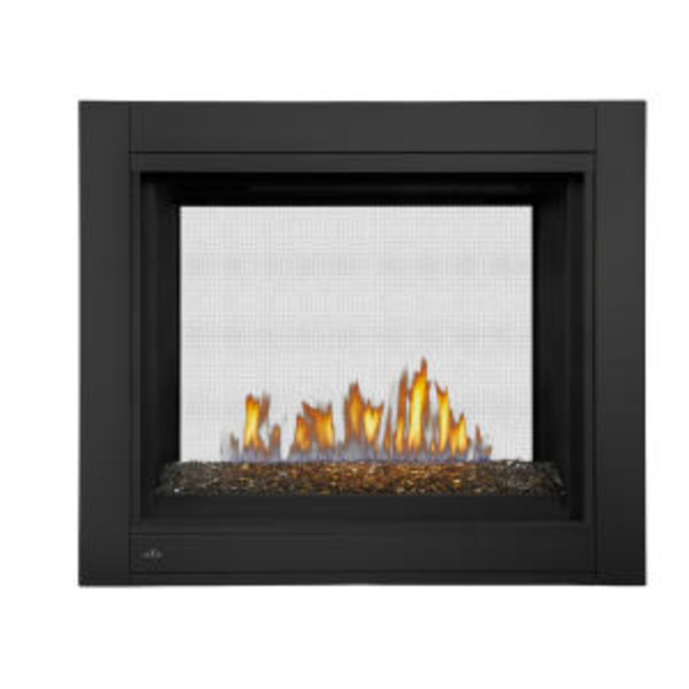 Napoleon Ascent Multi-View See-Thru Glass Bed Gas Fireplace-BHD4STGN