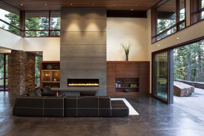 Montigo Exemplar 520 Direct Vent Gas Fireplace