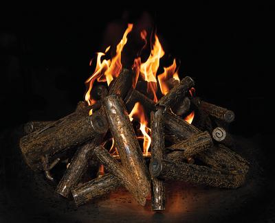 Warming Trends Double Tree-Style Crossfire Brass Burner - CFBDT240