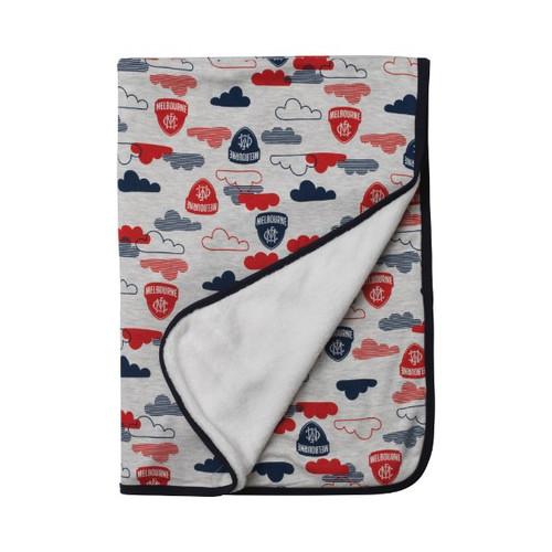 Baby Blanket 2019