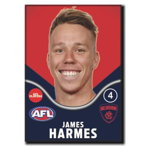 2019 AFL Magnets