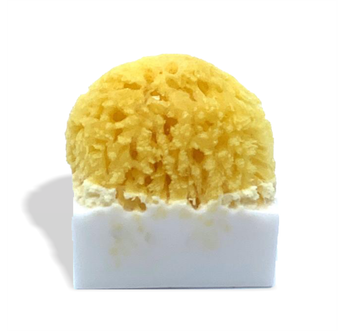 Hemp Infused Coconut Sea Sponge Soap - 200mg