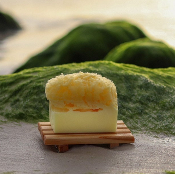 Aloe Vera Soap Sea Sponge Soap - 200mg