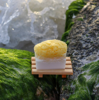 Coconut Sea Sponge Soap - 200mg