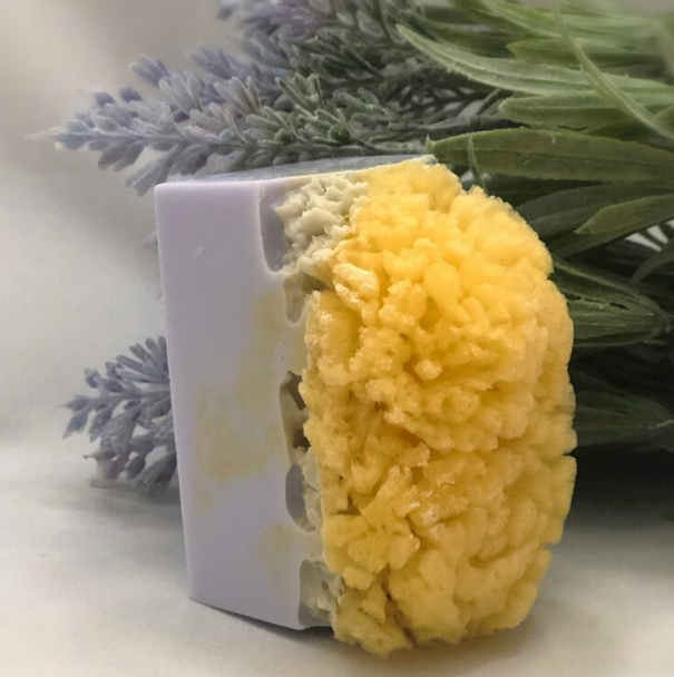 Lavender Soap Sea Sponge Soap - 200mg