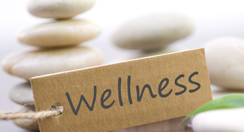 CBD oil is being used more and more for wellness care and with good reason!