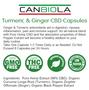 Canbiola Turmeric & Ginger Pure Hemp Extract Capsules 900MG (30MG Capsules)