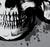 Vector Skull Trio