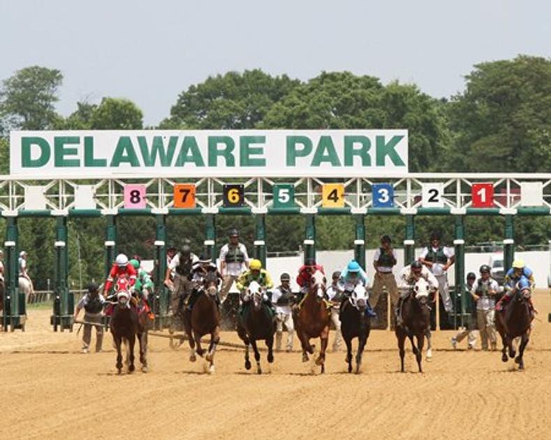 Delaware Park:  The Hidden Gem of the Diamond State