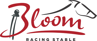 bloomlogo400.png