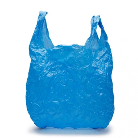 Plastic Bags are cheap convenient. But what are your alternatives?