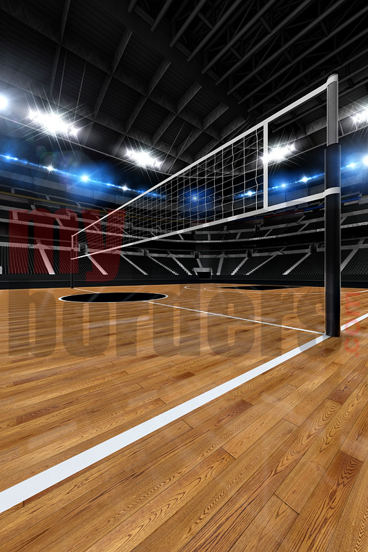 DIGITAL BACKGROUND - VOLLEYBALL  STADIUM II