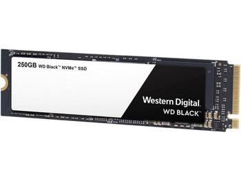 WDS250G2X0C