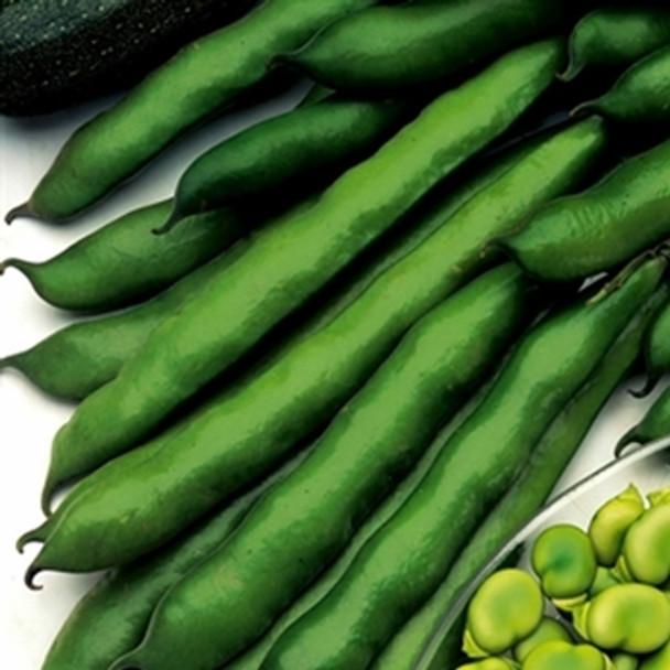 Broad Bean -Imperial Green Longpod - Seed Megastore - Sku 90