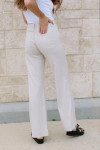 Askk Wide Leg Pant Back View