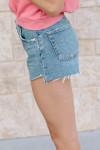 Agolde Parker shorts Side View