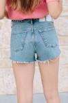 Agolde Parker shorts Back View