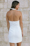 Amanda Uprichard Mezcal Mini Dress Back View