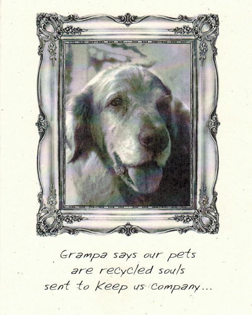 DSM3555-Q - Pet Sympathy Card Front