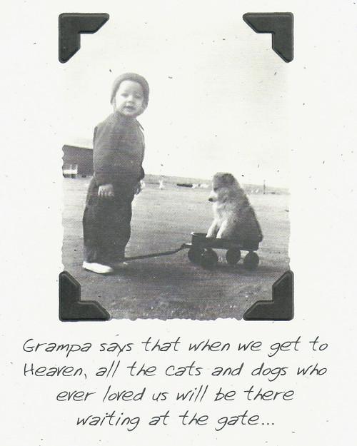 DSM1322-S Pet Sympathy Card Front