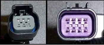 Torque Rush X-Link Nick Williams Throttle Body Adapter Harness