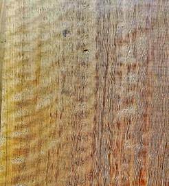 Eucalyptus - Blonde
