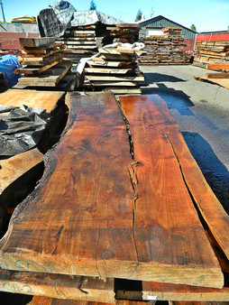 "Cypress Slab CP-3 3¼""x40""x108"" - wood slab"