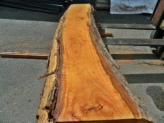 "Blonde Eucalyptus Slab GWS-820 3¼""x24""-27""x120"" - wood slab"
