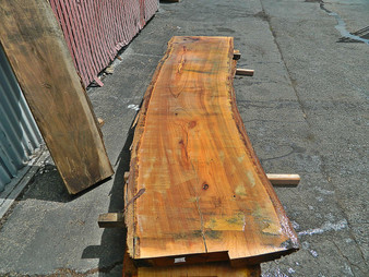 "Blonde Eucalyptus Slab GWS-819 3¼""x24""-27""x120"" - wood slab"
