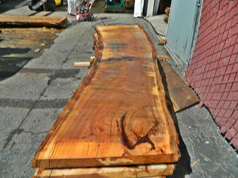 "Blonde Eucalyptus Slab GWS-815 3¼""x29""-32""x120"" - wood slab"