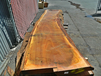 "Blonde Eucalyptus Slab GWS-814 3¼""x27""-33""x120"" - wood slab"