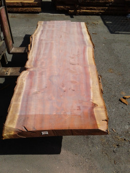 "Sequoia Redwood Slab (GWS-644) 3""x35""x115"""