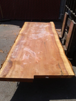 "Sequioa Redwood Slab (GWS-652) 3""x41""x91"""