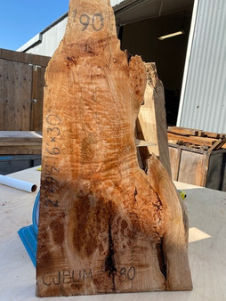 "Maple Burl    CJBUM-80    (2"" x  9.5-16"" x  30"")"