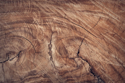 Exotic Wood Designs for Your Home
