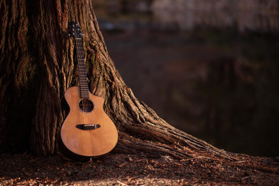 How to Use Exotic Wood for Instrument Building