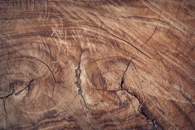 What is a Live Edge Burl Wood Slab, and What are its Common Uses?