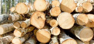 Effects of the California Water Drought on Domestic Wood Supply