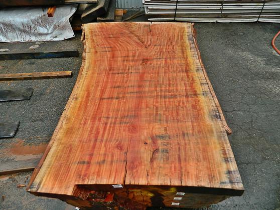 """Red Eucalyptus Slab GWS-805 3¼""""x40""""-50""""x83"""" - wood slab"""