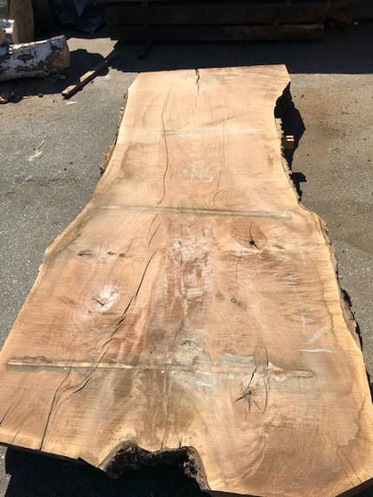 """GWS-829 Claro Walnut 46""""-57""""x120""""x3.5 - wood slab"""