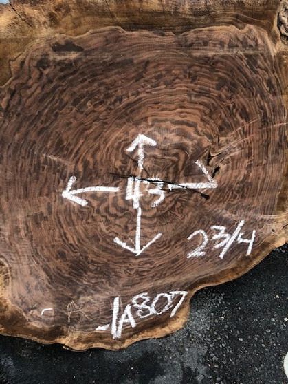 Walnut Round Slab   807-1A