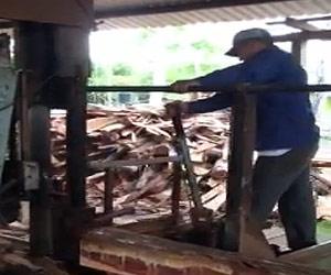 granadillo-on-a-sawmill