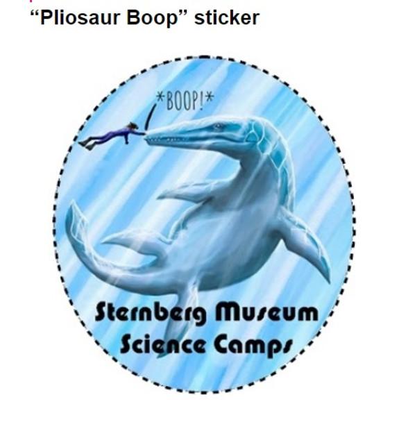 """3.5"""" x 3.9"""" Die-cut Sticker Sternberg Science Camps scholarship fund"""