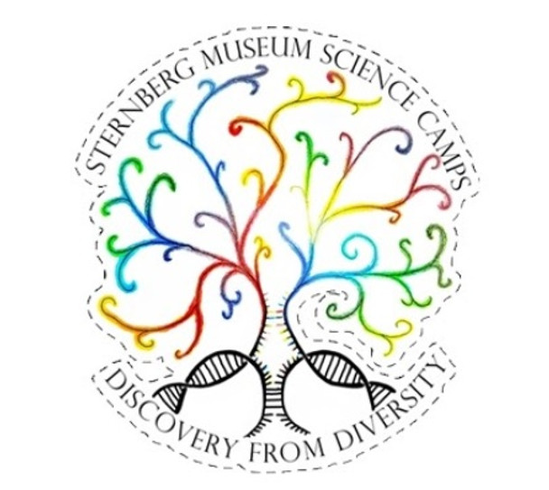 4 inch x 4.5 inch Die-cut Sticker Sternberg Science Camps scholarship fund