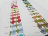 Color Card #9900 / Nylon Organdy Garland