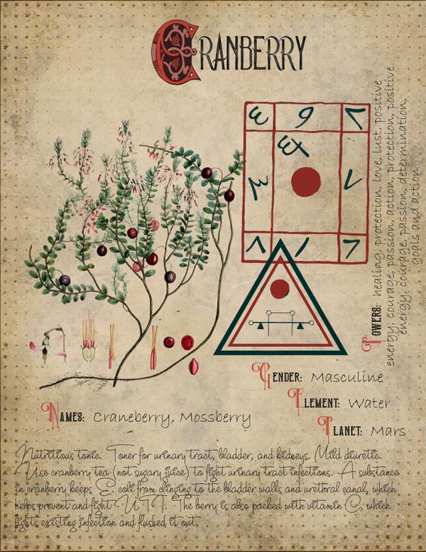 Craneberry Correspondences