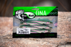 "BioBait DNA - 5"" Switchback - Rainbow Trout - 6 per pack"
