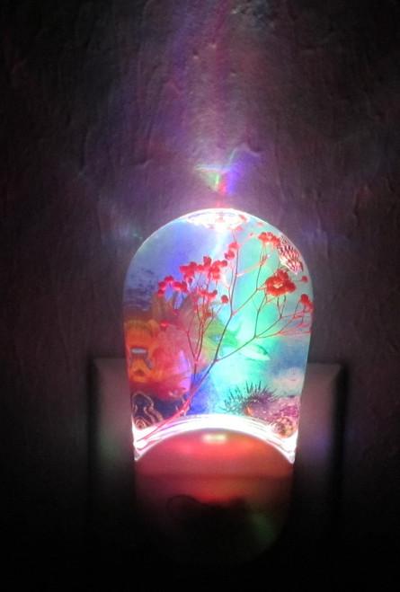 LED Night Light - 1 Watt - Coral