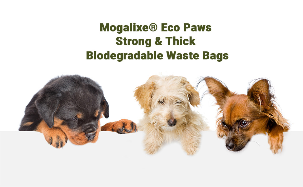 biodegrable degradable biodegradeable bio compostable dogs cats litter plant vegetable based doggie doggy board corn starch handles small big dispenser
